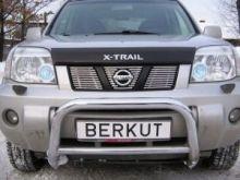 Решетка радиатора, Berkut, нерж. сталь, а/м 2001-2007