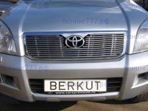 Решетка радиатора Berkut, с вырезом под логотип, нерж. сталь