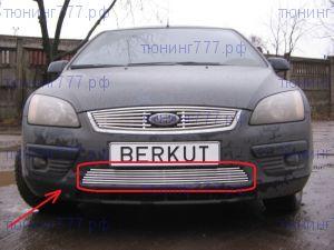 Решетка в бампер, Berkut, полированая нерж. сталь, а/м 2004-2007
