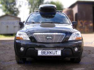 Решетка в бампер, Berkut, полированая нерж. сталь, а/м 2006-2009