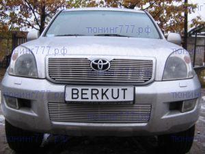 Решетка в бампер, Berkut, номерной знак на бампере, нерж. сталь
